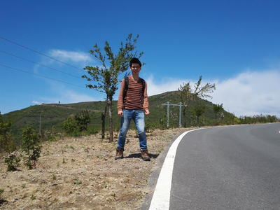 崎岖的公路